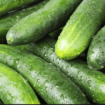 """Cucumber (खीरा)"" its beneficial for Joint Pain and Acidity"