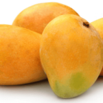 "Multiple uses of ""Mango (आम)"" for Kidney, Brain, Diabetes in Ayurveda"