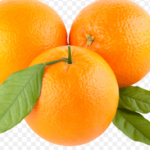 """Orange (संतरा)"" beneficial for General debility, Muscle Disease and more"