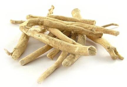Ashwagandha Tree Medicinal Benefits Dosage